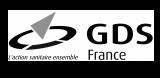 Logo GDS ignimotion