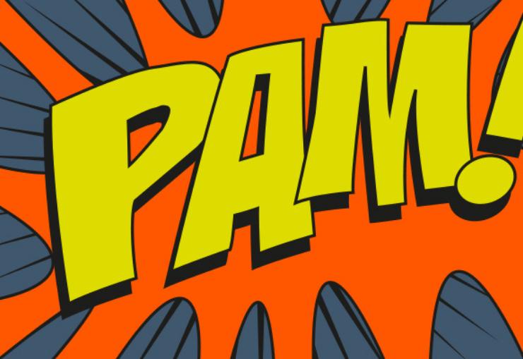 image PAM